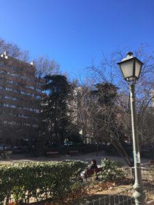 Apesar do tempo aberto e céu azul, janeiro tem registrado mínimas abaixo de zero em Madrid. (Foto: Cloves Teodorico/ Jornalismo Sem Fronteiras)